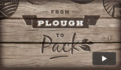 Watch our Plough to Pack video